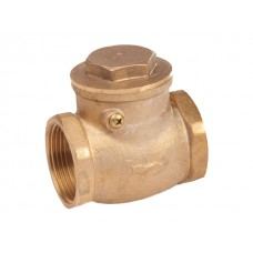 Non-return valve with hinge